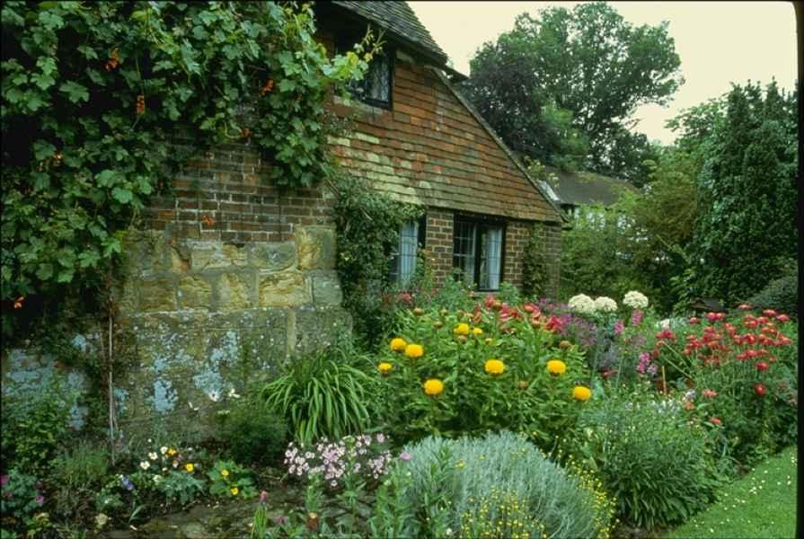 Дом и цветы в огороде