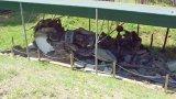 Чудеса случаются: авиакатастрофа вертолета Сикорский 19 июля 2008 года