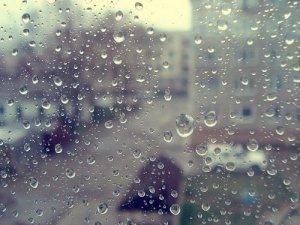 """""""Дождик лей - не жалей"""", или как важно вовремя оказаться с ведром."""