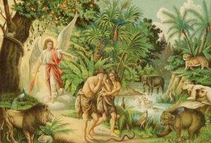 Возвращение в Эдемский Сад